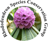 Rhododendron Species Conservation Group Logo